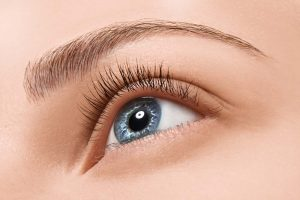 Meibomian Glands Dysfunction MGD causes & treatment nj eye center
